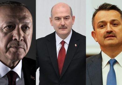 HKP Avukatları: Erdoğan, Süleyman Soylu ve Bekir Pakdemirli Hakkında Suç Duyurusunda Bulundu